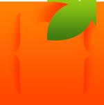 devpeel logo